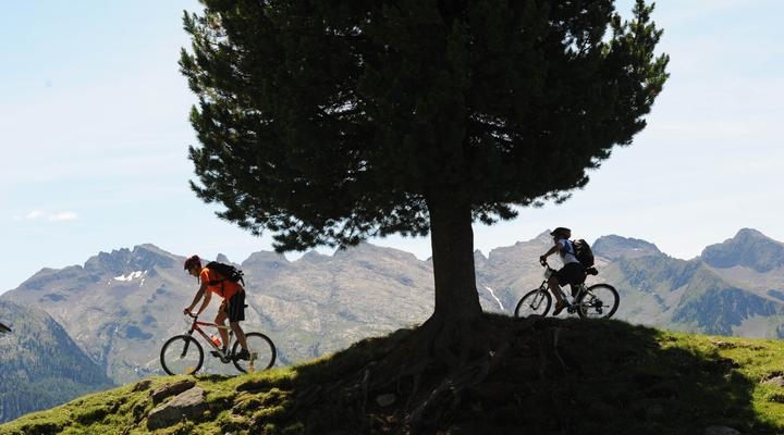 Mountain bike and cycling in the Dolomites