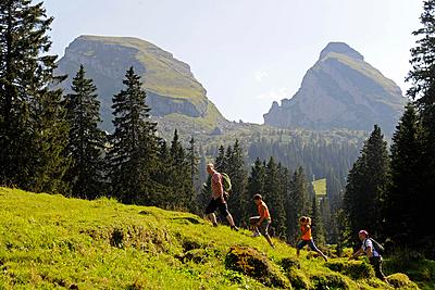 Nordic Walking in Val di Fiemme Trentino