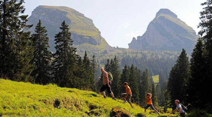 Excursions in the Fiemme Valley - Dolomites