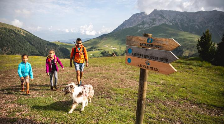 Our winter walks